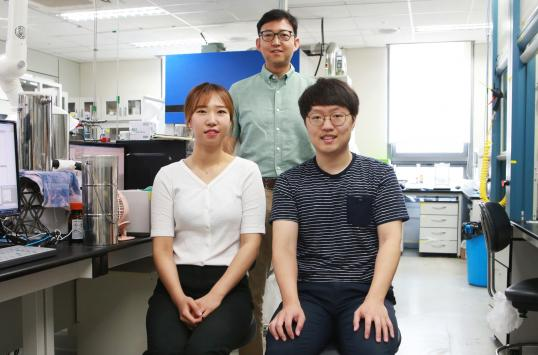 DGIST Succeeded in Materials Synthesis for High Efficiency in Biological Reaction 이미지