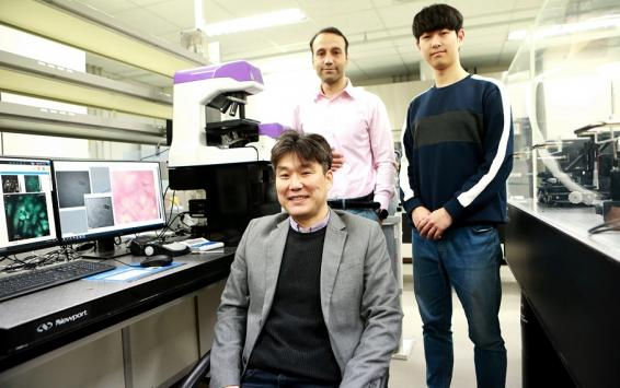 A Breakthrough in the 3D Image-based Cardiomyocyte Analysis Technique in Biomedical Field 이미지